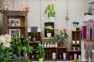 la boutique atelier zazi fleurs fleuriste au havre normandie