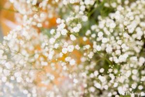 photo de gypsophile au havre chez atelier zazi fleurs