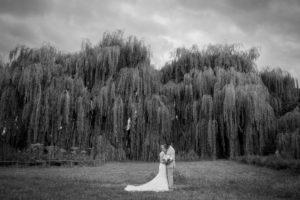 une photo en noir et blanc d'élodie et clément devant les saules-pleureurs de leur joli mariage en normandie